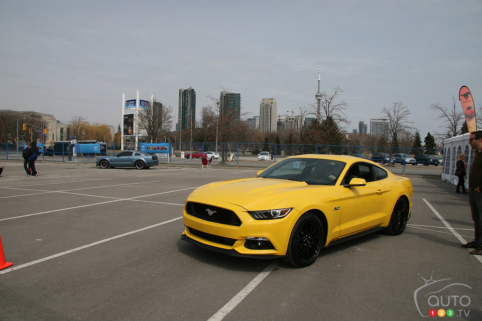 Ford Mustang: An icon celebrates its 50th birthday