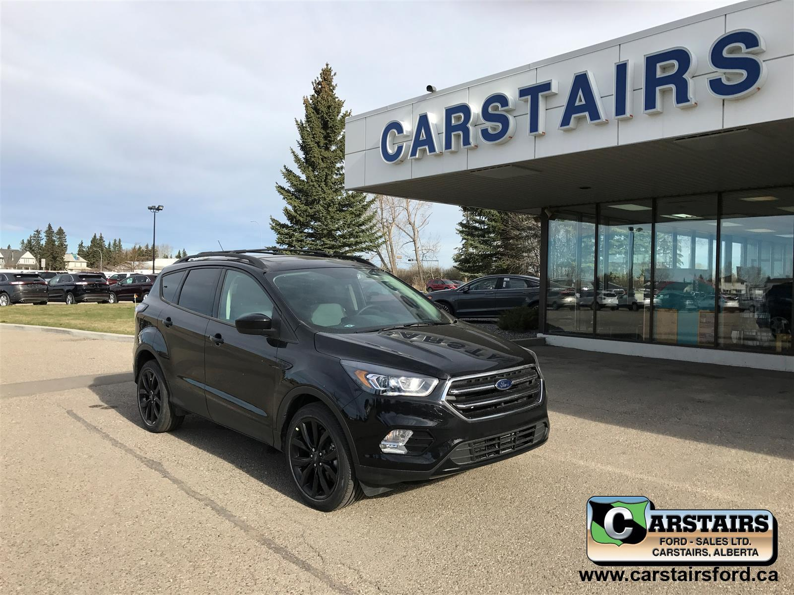 Ford Escape 1